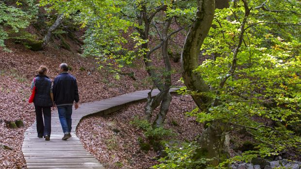Una pareja pasea por el Faedo de Ciñera