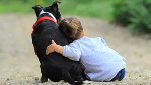 Las mascotas desarrollan inteligencias en niños de 0 a 7 años