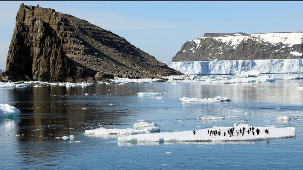 Descubren una «supercolonia» previamente desconocida de los pingüinos Adelia en la Península Antártica