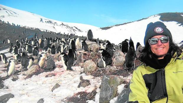 Josabel Belliure ha participado en el proyecto «Pingufor» durante la XXXI Campaña Antártica Española