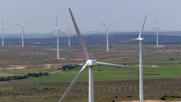 Economía verde: una oportunidad cierta de inversión
