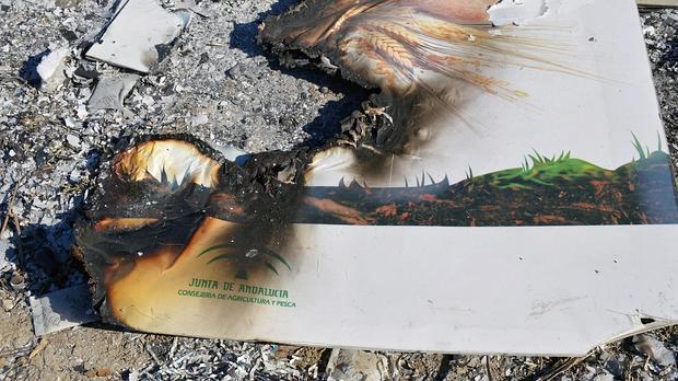Restos del material de la Junta quemado en un parque público de Alcalá de Guadaíra