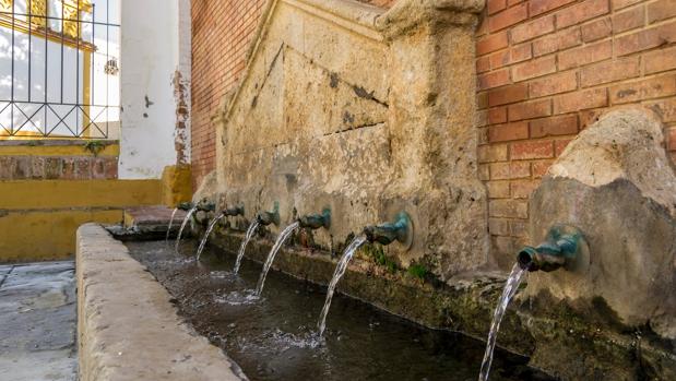 El agua de Emasesa traza dos rutas del agua por Mairena del Alcor