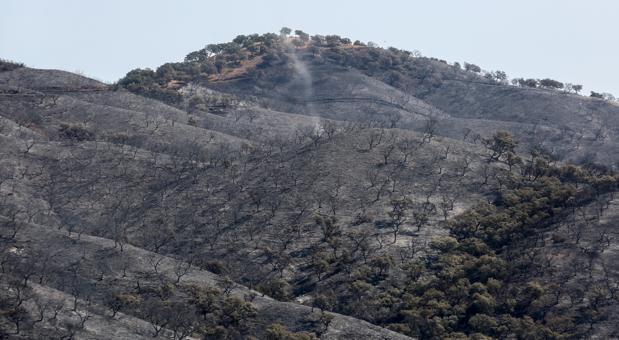 El fuego deja una gran mancha negra en la serranía de El Castillo de las Guardas