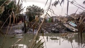 Los narcos explotan con fuerza el tramo sevillano del Guadalquivir