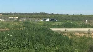 Aparece el cadáver de una mujer presuntamente asesinada en un olivar de Pilas