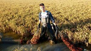 Agentes de Medio Ambiente precintan unas 600 redes de pescadores de cangrejo rojo de Los Palacios y Las Cabezas