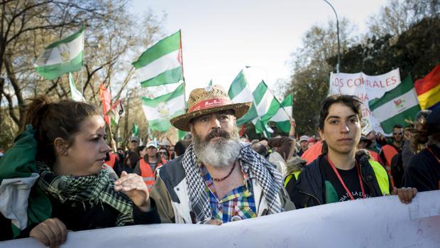 El PSOE denuncia que el alcalde de Marinaleda no convoca plenos ordinarios en el Ayuntamiento