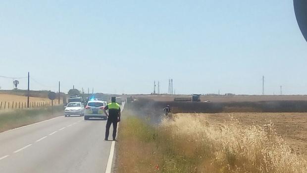 Un incendio devasta en Utrera doce hectáreas de cultivos de trigo