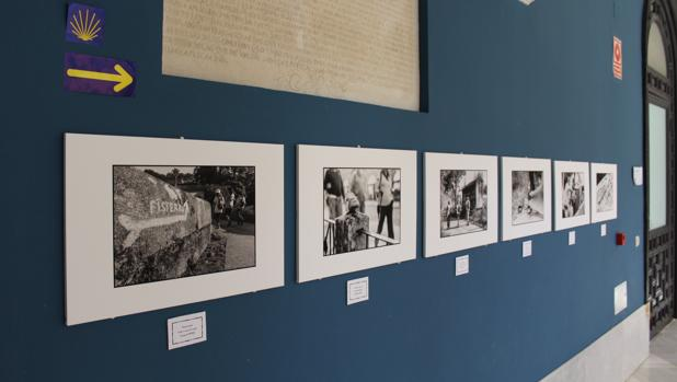 La exposición se encuentra en al patio del Ayuntamiento de Utrera hasta finales de julio
