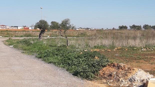 La zona donde apareció el cuerpo sin vida de Cayetano el pasado viernes