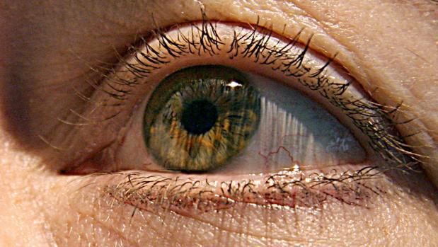 La no detección a tiempo del glaucoma conduce a la ceguera irreversible