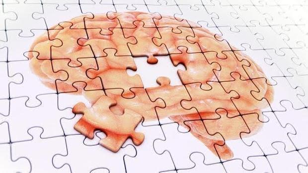 Que nuestro cerebro envejezca 'mejor' o 'peor' podría estar condicionado por un solo gen