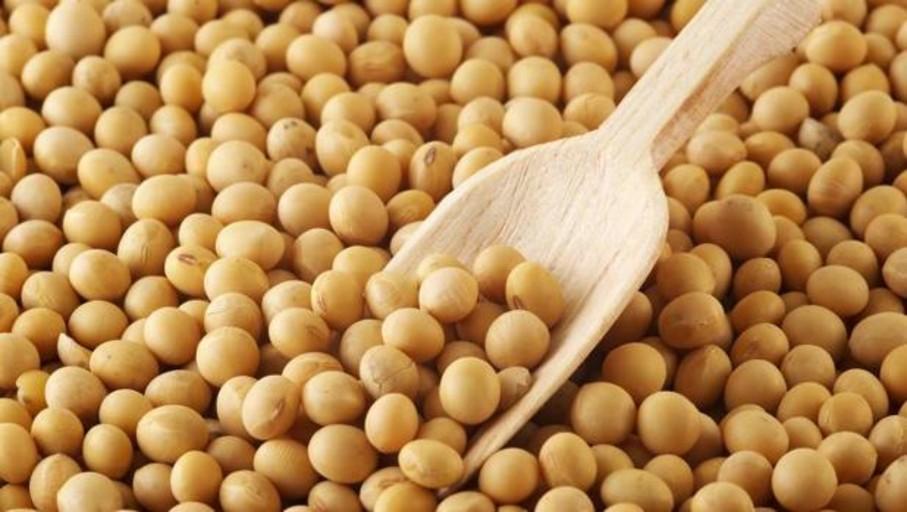 La soja disminuye el colesterol «malo» hasta un 4%