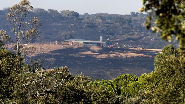 M s de 200 efectivos trabajan en la extinci n del incendio - Entradas baratas castillo de las guardas ...