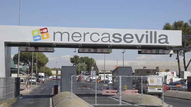 Entrada al mercado mayorista de Sevilla