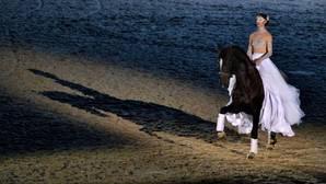 «Un caballo de cine», el espectáculo de Sicab 2016