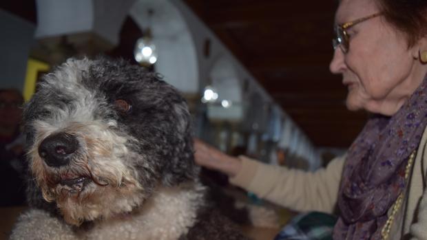 La perra Panda con uno de las residentes