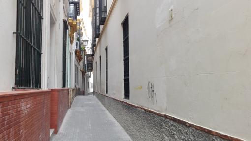Calle Aire (148 cm)
