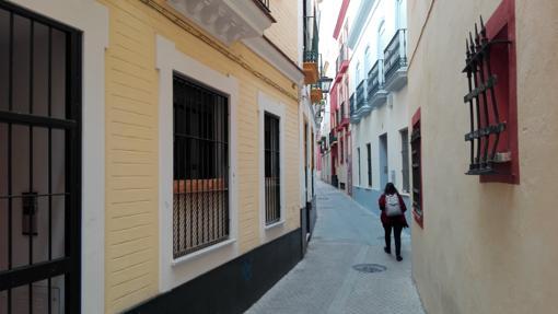 Calle Morgado (196 cm)