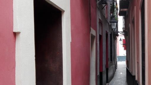Calle Reinoso (106 cm)