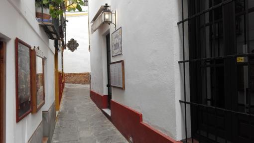 Calle Rodrigo Caro (130 cm)