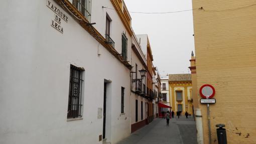 Calle Vázquez de Leca (392 cm)