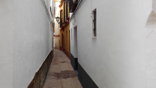 Calle Virgen de la Alegría (145 cm)