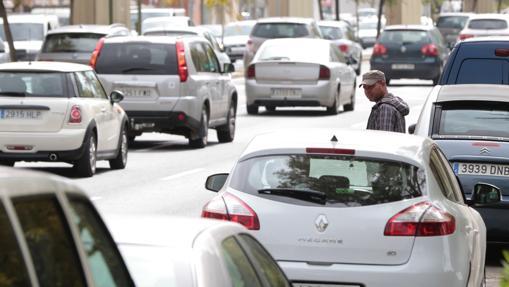 Un gorrilla espera entre los coches aparcados