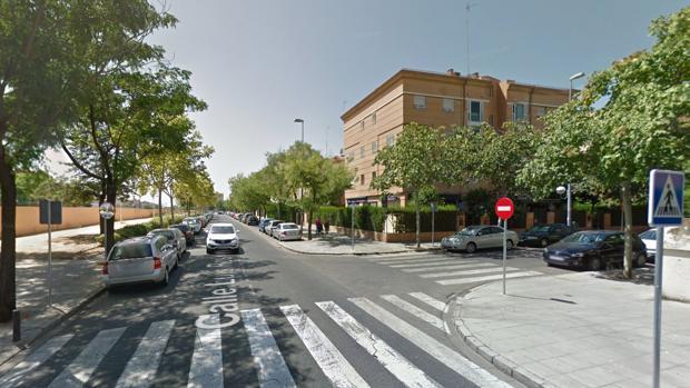 El suceso ha tenido lugar en la calle Genaro Parladé