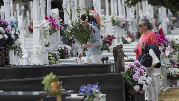 La pelea tuvo lugar en un bar próximo al cementerio de Sevilla