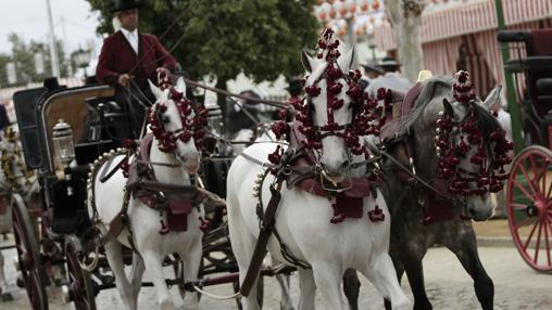 Un coche de caballos por el Real