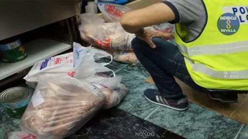 Los agentes descubrieron comida almacenada en bolsas y tirada por el suelo
