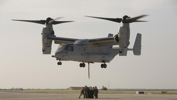 Marines del destacamento de Morón, durante una maniobra ABC