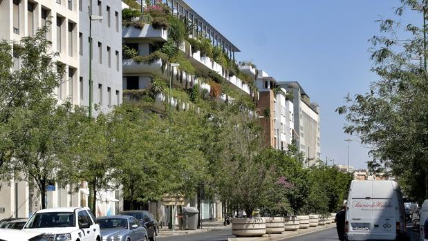 Avenida de la Buhaira, con el metro cuadrado más caro de Sevilla