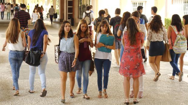 Cada año salen miles de egresados de las facultades en Sevilla