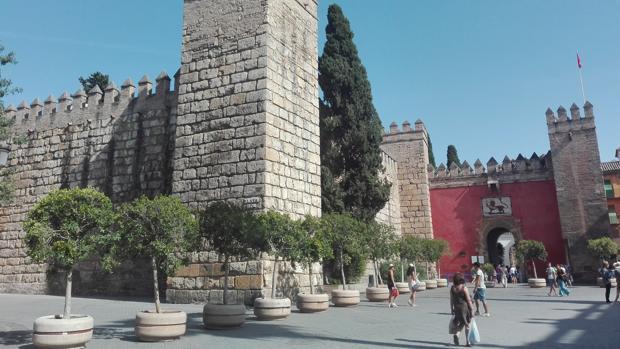 Maceteros que se ha instalado en el entorno del Alcázar
