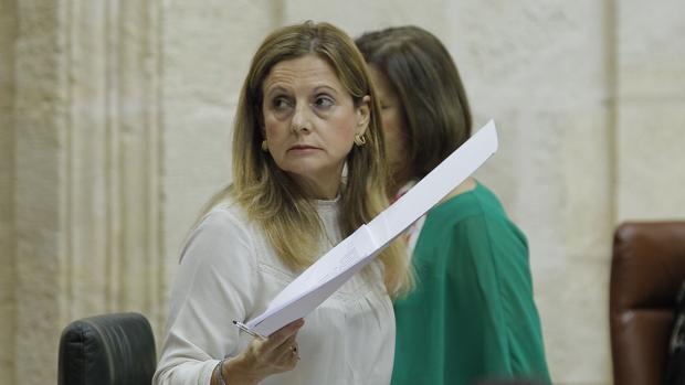 La consejera de Salud de la Junta, Marina Álvarez, este miércoles en el Parlamento