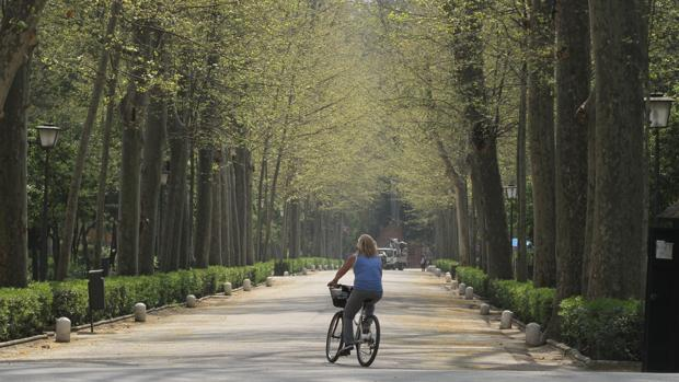 Una ciclista en pleno Parque de María Luisa