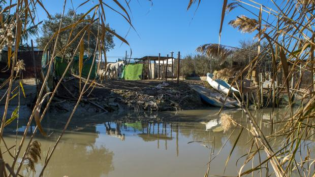 Poblacion sevillana de Isla Mayor, donde una redada antidroga acabó el pasado enero con once detenidos