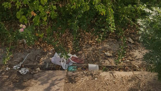 Vasos, preservativos usados y otros desperdicios, en el solar del antiguo Palenque