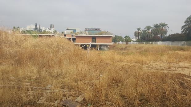 El solar del antiguo Palenque es actualmente un erial en mitad de la Cartuja