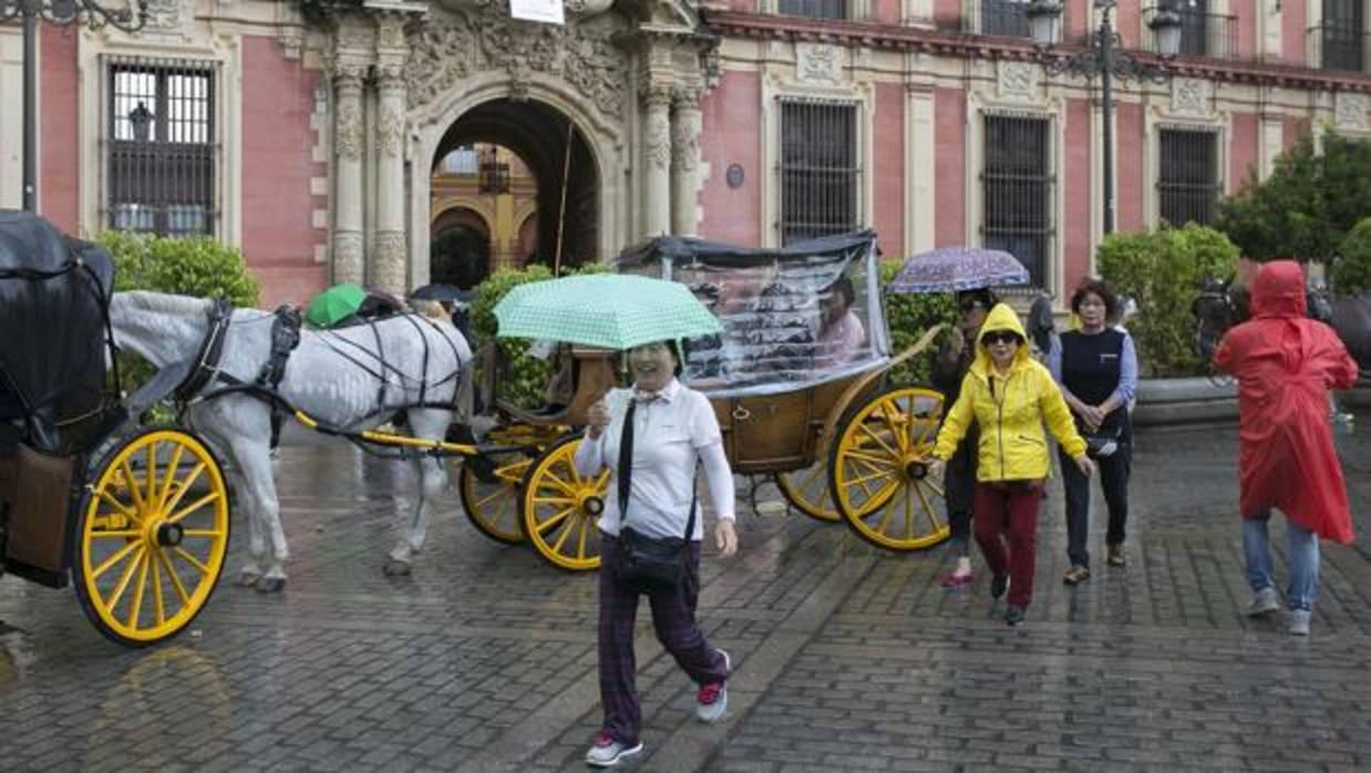 Tiempo en sevilla el tiempo el fr o y la lluvia se quedan en sevilla los pr ximos d as - El tiempo en dos hermanas sevilla ...