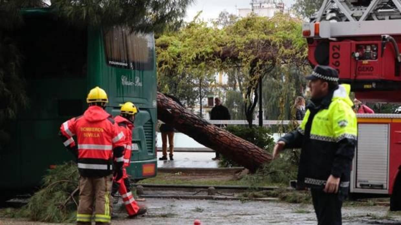 Tornado en sevilla los tornados que han pasado este jueves por sevilla repentinos e imposibles - Tornados en espana ...