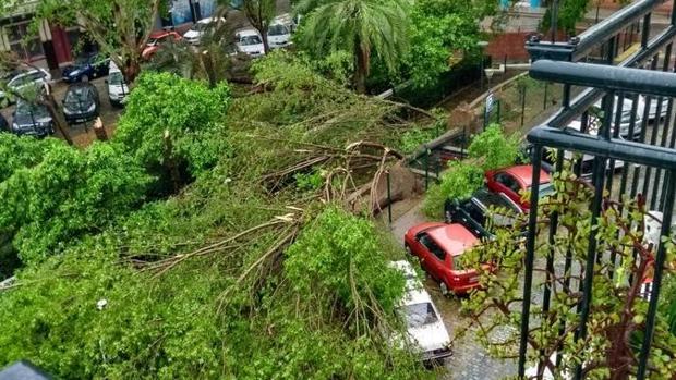 Hemeroteca: ¿Cómo ha afectado el tornado a las diferentes zonas de la ciudad? | Autor del artículo: Finanzas.com