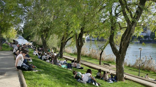Sevilla ha registrado estos días temperaturas altas en la capital