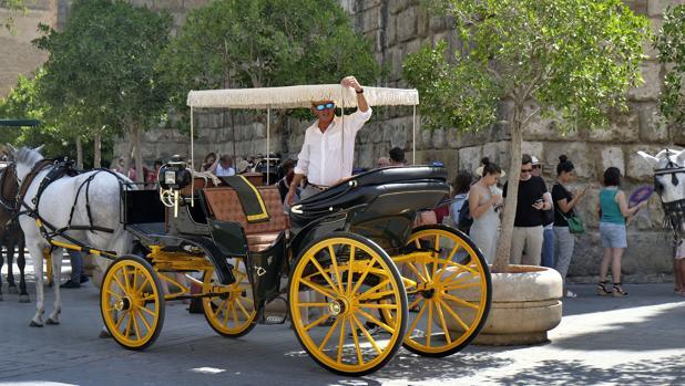La fila de coches de caballos y la cola de turistas, separadas por los macetones de los Reales Alcázares