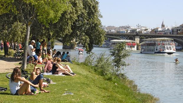 Tomando el sol en la ribera del río