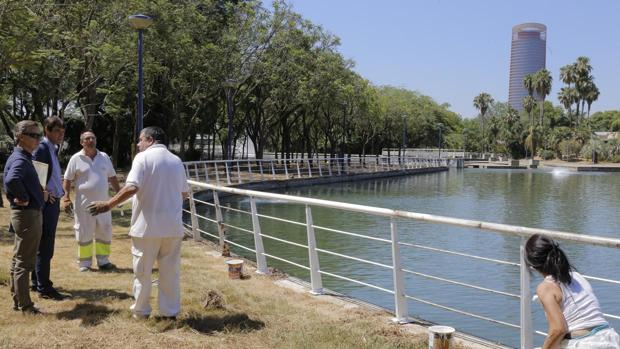 Reapertura del Jardín Americano de Sevilla