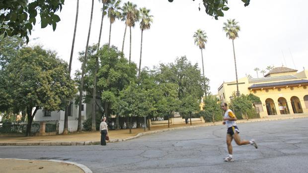 La ciudad de Seviilla disfrutará de un par de días sin precipitaciones a mediados de esta semana